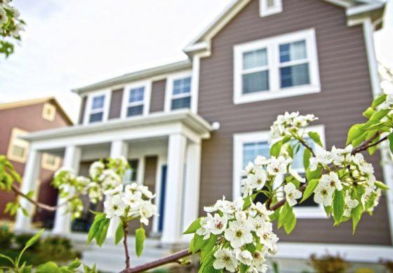Как да обновим дома си през пролетта?