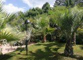 Поддръжката на ботаническа градина изисква много грижи и отдаденост (СНИМКИ)