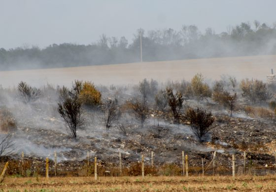 РИОСВ разпореди на кмета незабавно да се потушат огнищата на тлеене на сметището край Добрич