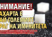 ВНИМАНИЕ! Захарта е най-големият враг на имунитета
