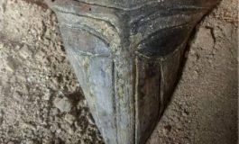 """Къснохалколитна """"маска"""" е най-новата находка в Провадия-Солницата"""