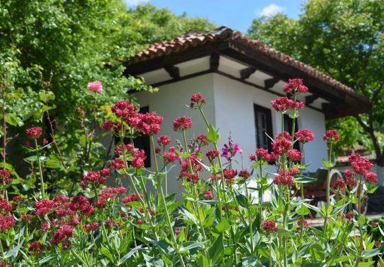 Етнографска къща привлича туристи в село Кипра