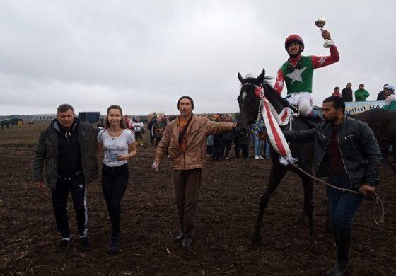 Конни надбягвания се проведоха в село Момчилово, община Ветрино
