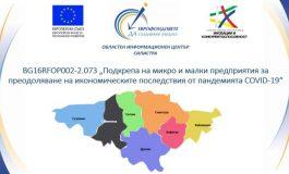 146 фирми от област Силистра са одобрени за подкрепа по процедурата за преодоляване на икономическите последствия от пандемията COVID-19
