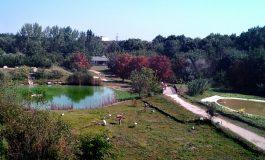 Екзотична къща ще бъде изградена в Зооцентъра в Добрич