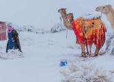 Сахара е под снежно одеяло (СНИМКИ)