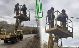 Служители на Община Каварна свалиха с вишка бедстваща върху дърво котка