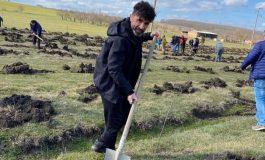 ЗА ПРИМЕР! Денвенци засадиха 2000 дръвчета (много снимки)