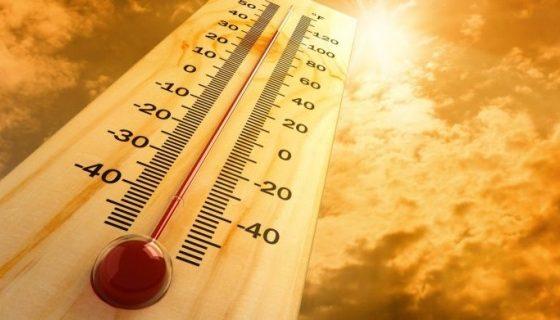 Опасни горещини: Температурите скачат до 41 градуса