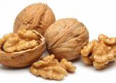 Орехите намаляват лошия холестерол